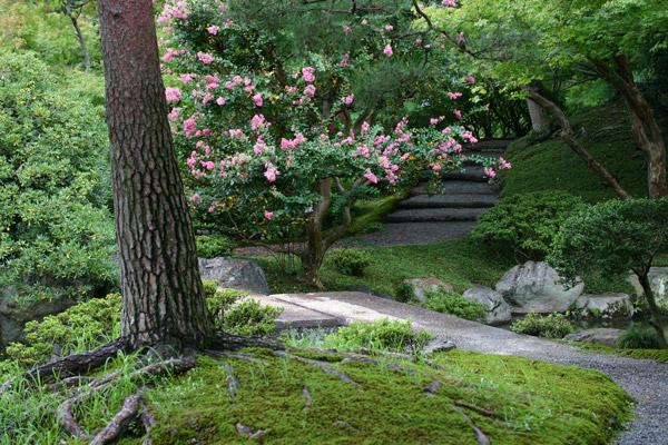 http://www.gardenvisit.com/assets/madge/sento_gosho_palace/600x/sento_gosho_palace_600x.jpg