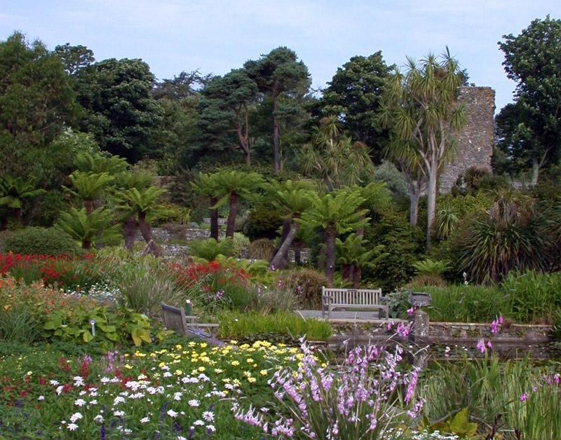 The walled garden logan botanic garden