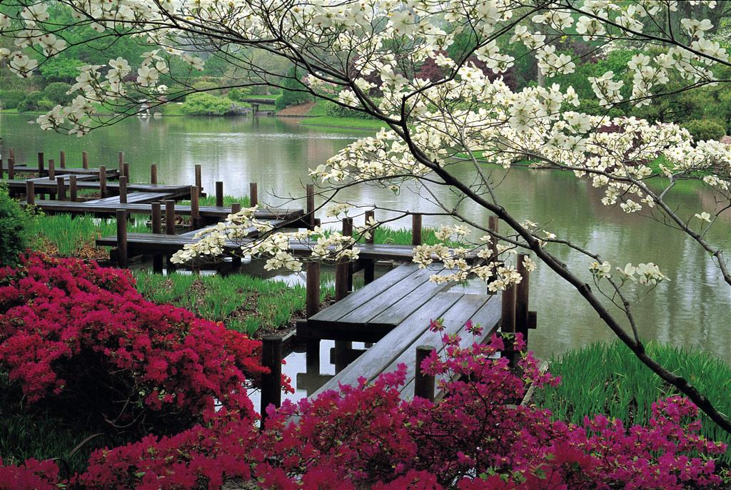 what is your dream venue wedding venues Missouri Japanese Garden 600x