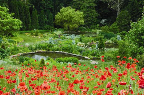 http://www.gardenvisit.com/assets/madge/chanticleer_garden_wayne/original/chanticleer_garden_wayne_original.jpg