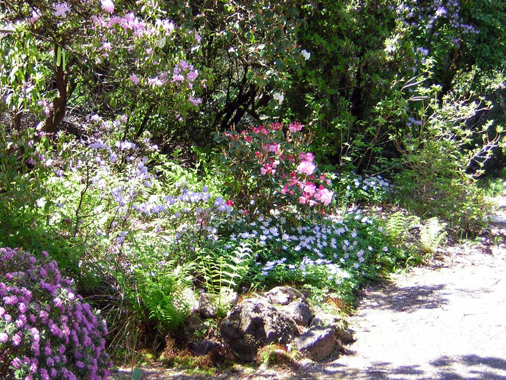 Berry Botanic Garden | GardenVisit.com, the garden landscape guide