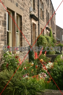 House Garden Berwick