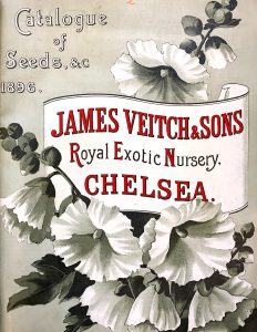 Veitch & Sons Nursery Cataogue