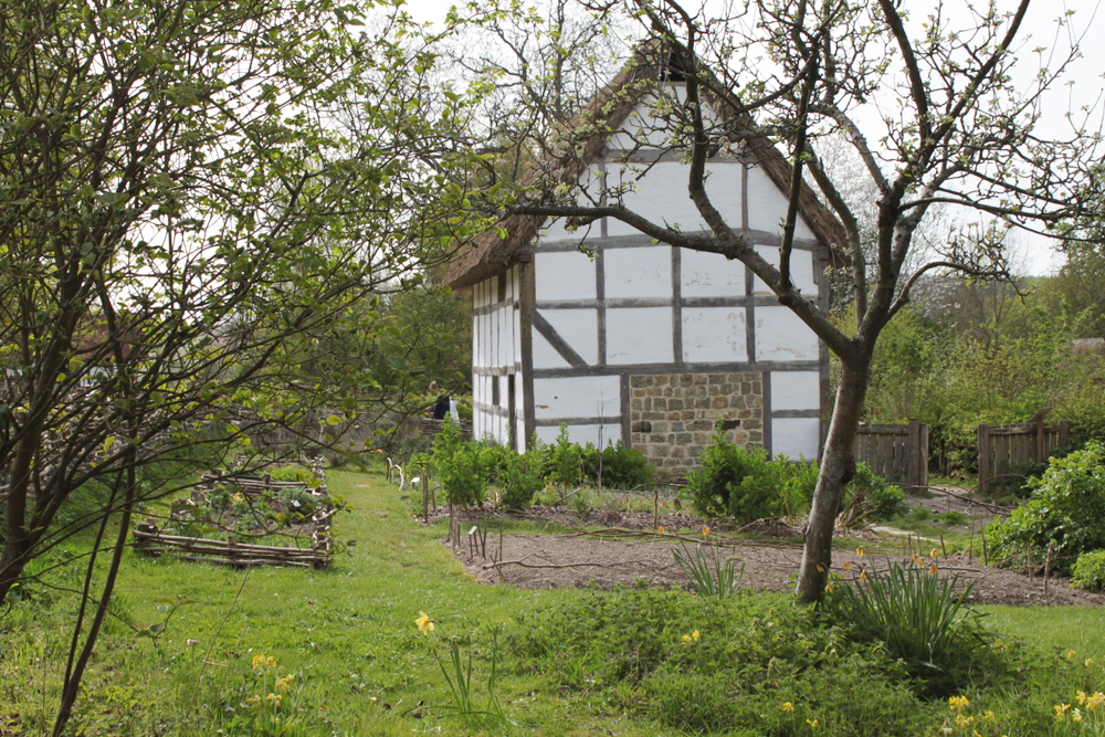 Weald and Downland Museum Medieval Gardens