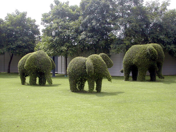 Elephant Topiary, Bang Pa-In Summer Palace