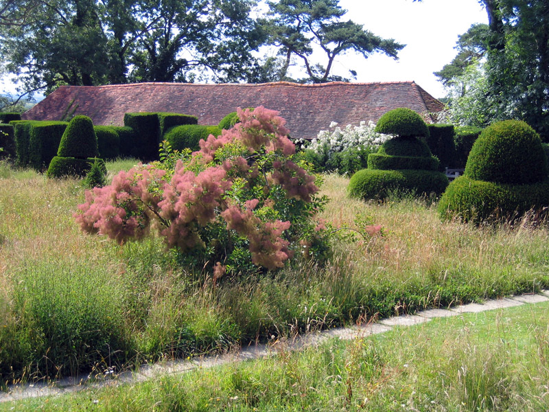 Topiary, Great Dixter