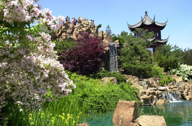 http://www.gardenvisit.com/assets/madge/montreal_botanical_chinese_garden/600x/montreal_botanical_chinese_garden_600x.jpg