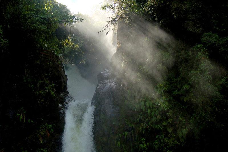 http://www.gardenvisit.com/assets/madge/la_paz_waterfall_gardens/600x/la_paz_waterfall_gardens_600x.jpg