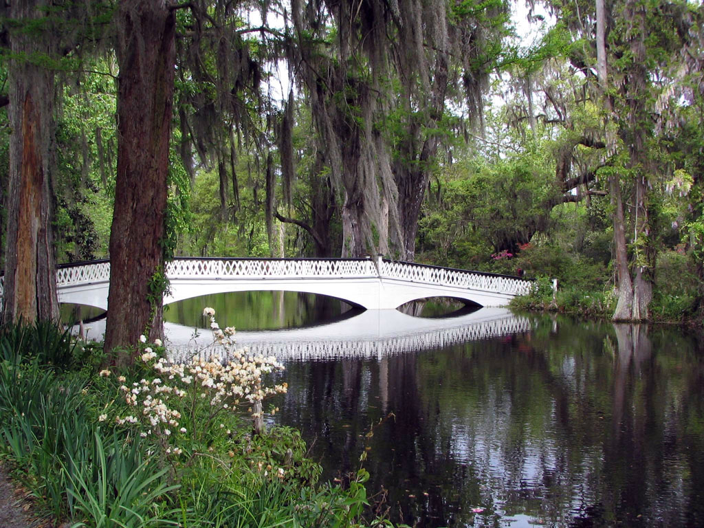 Bridge, Magnolia Plantation Garden