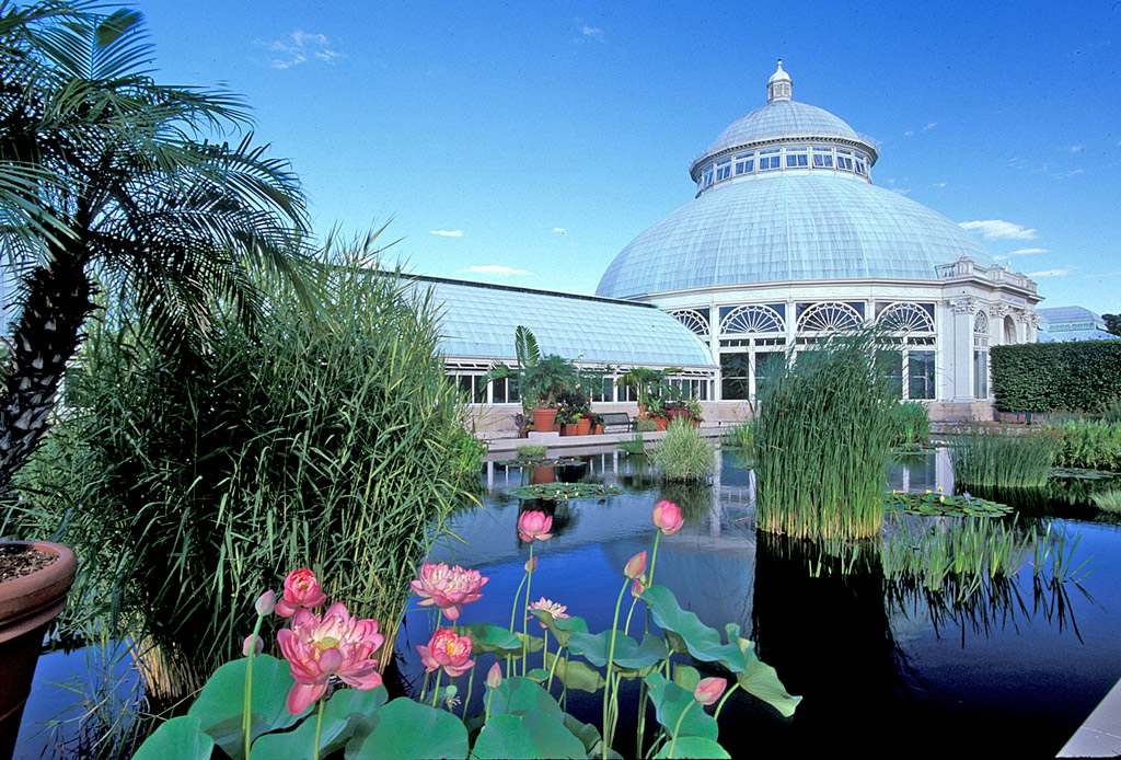 New York Botanical Gardens – A Picturesque Getaway