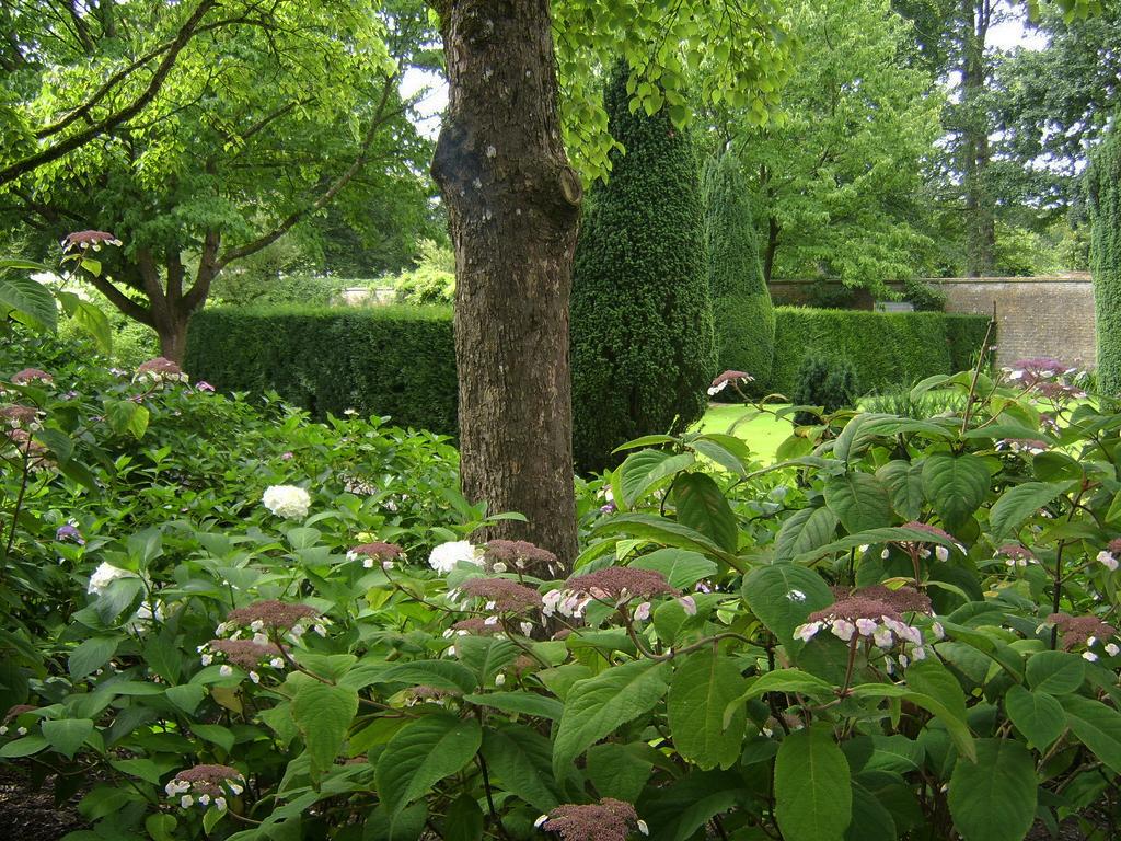 Longleat Garden Luke