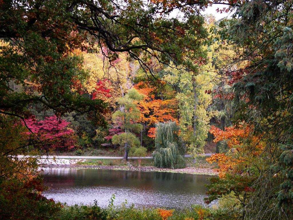 Hidden Lake Gardens