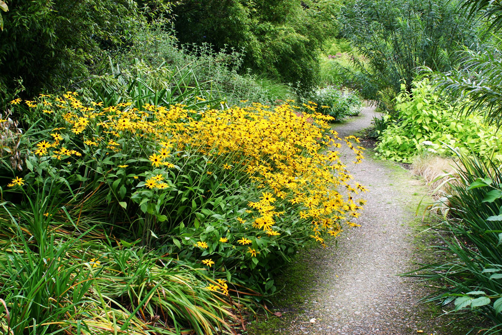 Path, Broadview Gardens