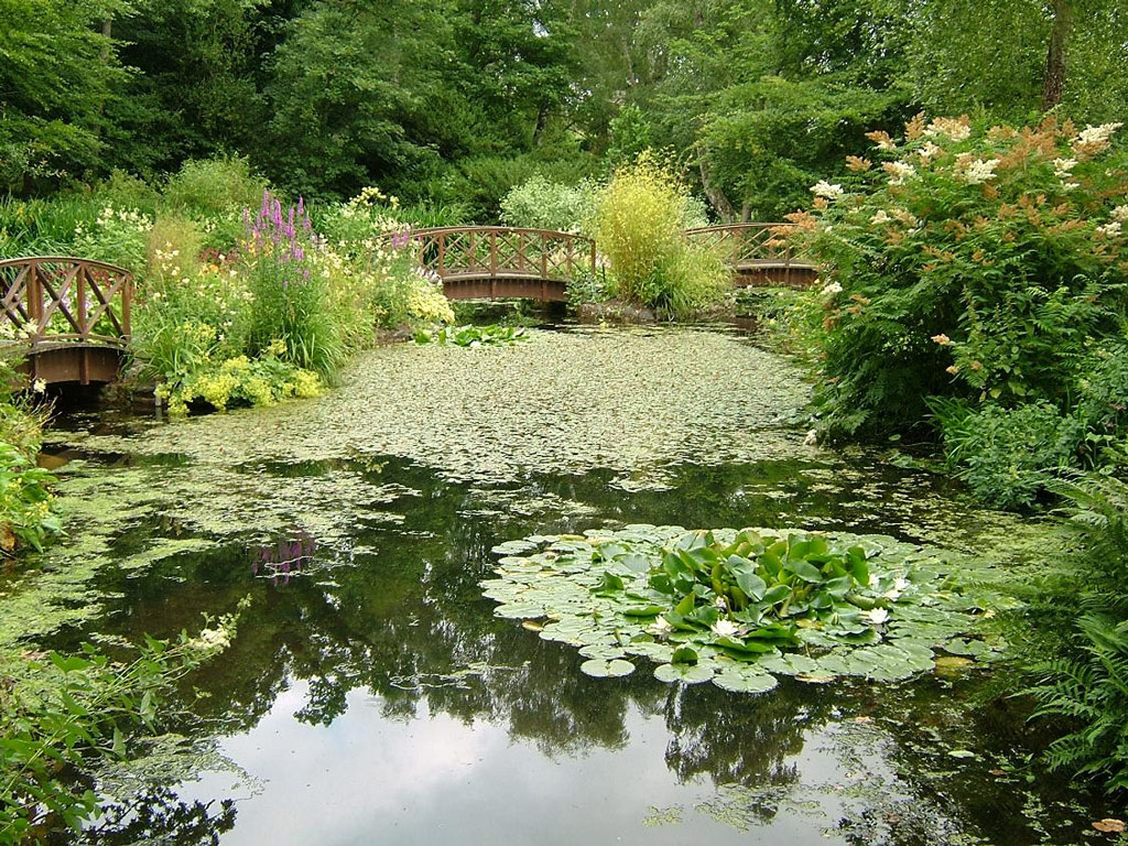 http://www.gardenvisit.com/assets/madge/monteviot_water_garden/600x/monteviot_water_garden_600x.jpg