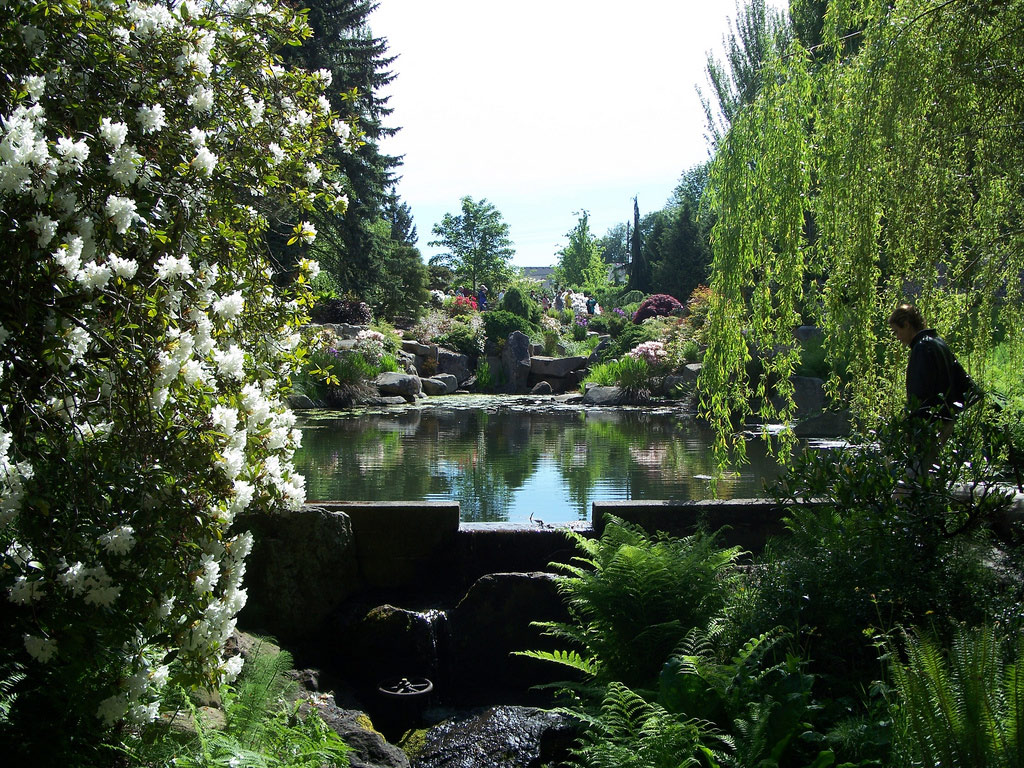 Kubota Garden, Seattle