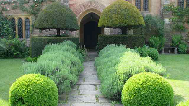 Path, Cothay Manor Garden