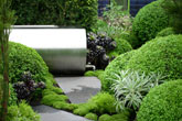 Sustainable roof garden