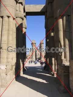 Columns at Luxor Temple Egypt