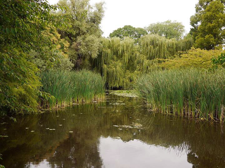 Cambridge University Botanic Garden, 2010